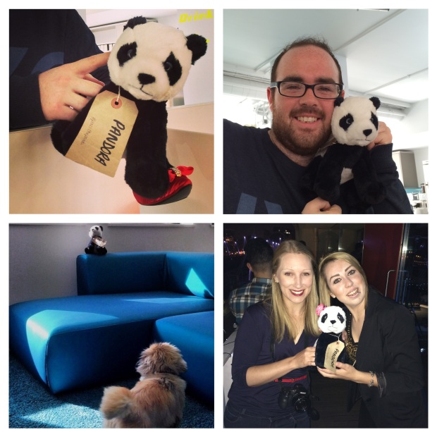 Panda Montage 2